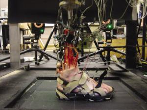 Figure 1. Dynamic cadaver gait simulator.