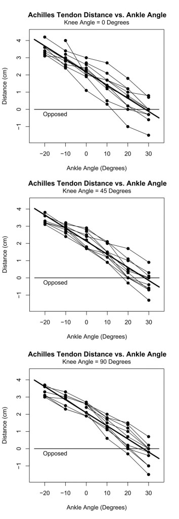 Figure 3: Data plots with regression lines showing tendon stump apposition at 28°  of plantar flexion regardless of knee flexion angle