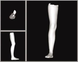 3D model of full leg scan.