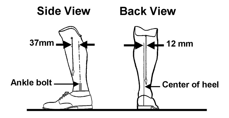 Simplifying alignment for transtibial prostheses | Lower