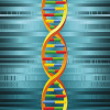 Researchers make early progress toward understanding genetics of sports injuries