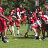 Lockout lessons: NFL Achilles injuries spark debate