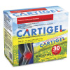 Cartigel Joint Supplement