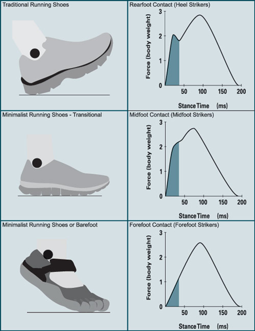 Effects Of Minimalist Shoes On Running Gait Lower Extremity Review Magazine