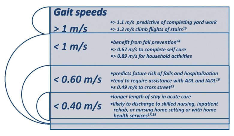 speed test pt