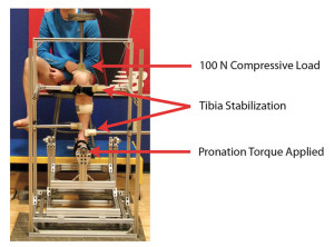 Figure 1. A ROM device was utilized to apply a 100-N compressive force and to passively pronate the rearfoot with a 10-Nm torque. The position of the rearfoot relative to the leg was then captured using an eight-camera motion-capture system.