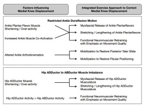 Figure 2. Integration of exercises to address multiple components of knee injury prevention.