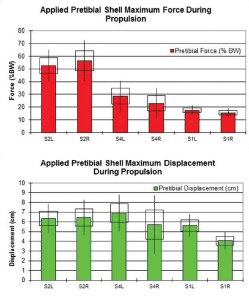 Figure 4. Maximum pretibial shell force (top) and displacement (bottom) exerted by each participant during the propulsive phase of gait. One (rectangle) and two (bar) stan- dard deviation values are given. Participants are ordered from greatest (S2) to least (S1) gain in walking velocity braced vs unbraced. L: left leg, R: right leg.