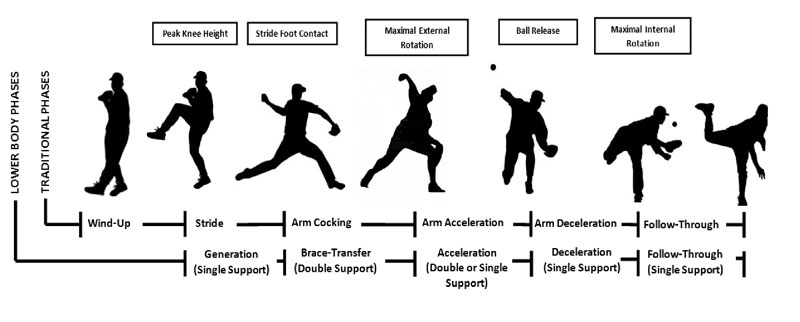 Figure 2. Traditional and lower body pitching delivery phases transitioned by discrete events. Windup to peak knee height initiates the delivery, in which the pitcher generates forward momentum in single support until stride foot contact, which refers to the generation phase. Following foot contact, forward momentum is braced, then transferred to pelvic-trunk rotation prior to maximal external shoulder rotation, which refers to the brace-transfer phase in double support. Following maximal external shoulder rotation, acceleration of the throwing arm occurs until ball release; afterwards, deceleration transitions to follow-through in single support.