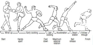 Figure 1. Phases of the pitching motion.