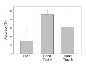 Figure 4. The hand perceives shoe mass much more accurately than the foot. Values areaverages±standarddeviation.DatafromSladeetal.17
