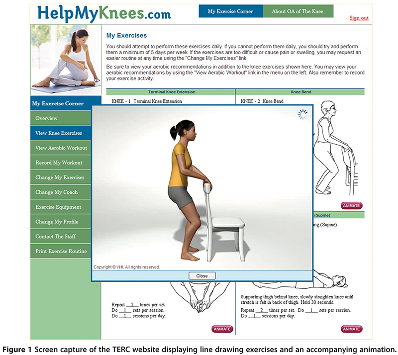 Figure 1. Screen capture of the TERC website displaying line drawing exercises and an accompanying animation.