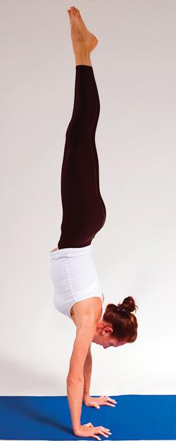 Figure 1. Handstand pose.