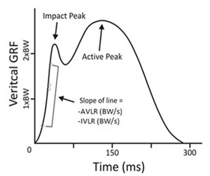 igure 1. Vertical ground reaction force (GRF) curve with the variables of interest, average vertical loading rate (AVLR) and instantaneous vertical loading rate (IVLR). Note that both vertical loading rates (AVLR and IVLR) were calculated in the region between 20% and 80% of the impact peak. (Adapted from http://runblogger.com/ 2011/02/vertical-impact-loading-rate-in-running.html.)