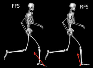 Figure 1. The resultant ground reaction force vector (red arrow) is larger and oriented more posteriorly for forefoot strike running (left) vs rearfoot strike running (right) in the early part of stance (~8% of stance). Adapted from reference 38.
