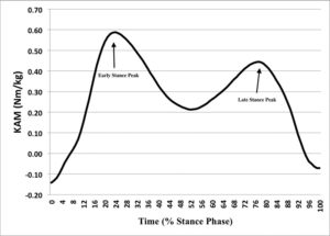 Figure 1. Stance phase external knee adduction moment over time