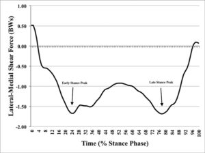 Figure 2. Stance phase frontal plane shear force over time