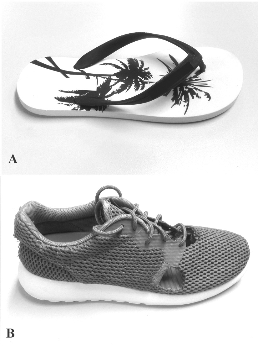 Flip flops, bare feet, or sports shoes